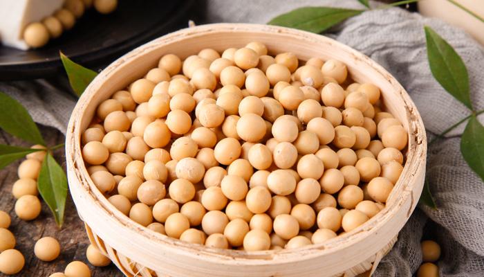 大豆是种子还是果实