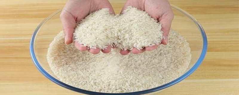 大米生虫子处理小诀窍
