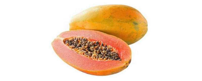 木瓜成熟时间
