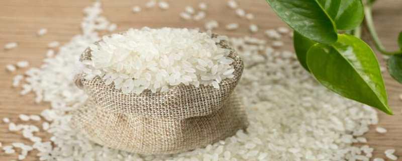 粳米是什么米